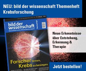 bdw_krebsforschung_300x250px_170430