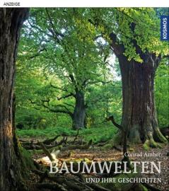 Einband Baumwelten und ihre Geschichten