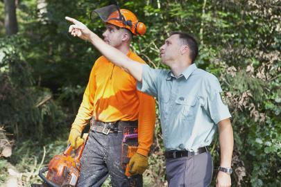 Die Zertifizierung gibt klare Richtlinien vor, die bei der Waldbewirtschaftung zu beachten sind