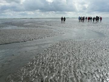 Wattenmeerlandschaft bei Ebbe