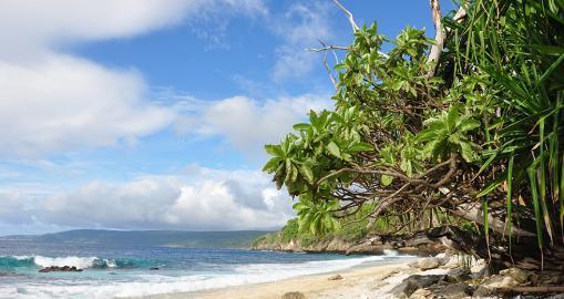 Ein tropisches Südsee-Paradies: Die Weihnachts-Insel