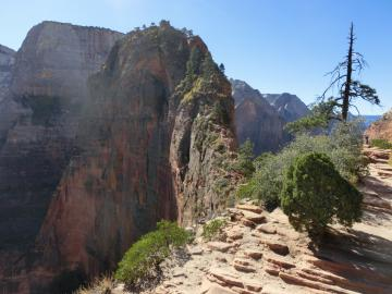 Zion Canyon - Angels Landing Trail