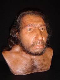 Rekonstruierte Neandertalerbüste