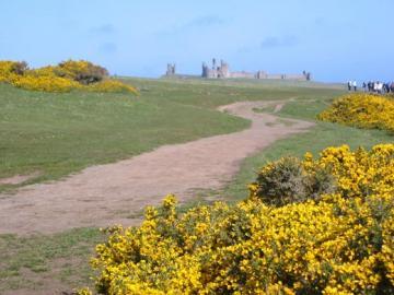 Dunstanburgh Castle aus der Ferne