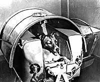 Sputnik 2 mit Hündin Laika