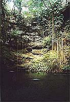 Cenote Ik-Kil (© L. Scheitzach).jpeg