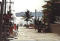 Kreuzfahrtschiff vor Playa del Carmen (© L. Scheitzach).jpeg