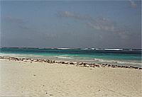 Einsamer Strand bei Tulum (© L. Scheitzach).jpeg