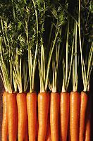 Frisches Gemüse liefert dem Körper lebensnotwendige Vitamine und Mineralien.