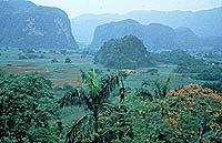 Tropische Landschaft im Vinales-Tal: Im Hinterland Kubsa gibt es viel zu entdec