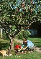 Wer eine Auszeit vom Schreibtisch nimmt, kann sich z.B intensiv dem Hobby Gartenarbeit zuwenden.