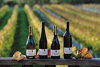 Wein: Nektar der Götter