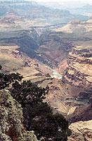 Schlucht des 1352 km langen Colorado-Flusses am Grand Canyon