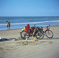 Dänemark per Fahrrad: Der Ostseeradweg verläuft überwiegend entlang des Wassers.