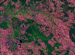 Zum Vergleich: Aufnahme der Elbe vom 14. August 2002.