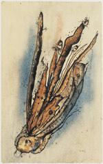 Alfred Otto Wolfgang Wols (1913-1951); Ohne Titel, 1942/45; © Pinakothek der Mod