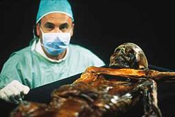 Untersuchung des mumifizierten Leiche.jpeg