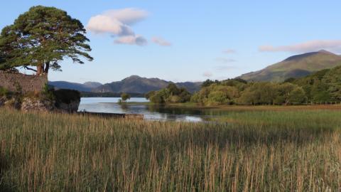 Blick auf den Lough Leane in  Killarney.