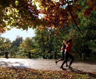Joggerinnen im Herbst