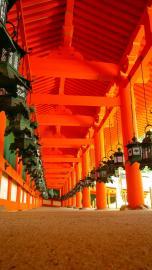 Laternen des Kasuga-Taisho