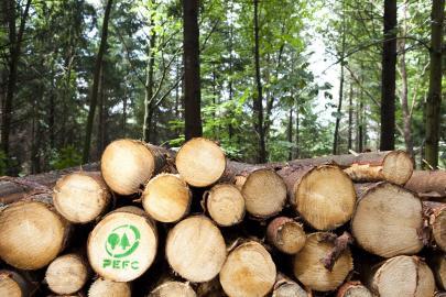 PEFC - Nachhaltige Waldwirtschaft