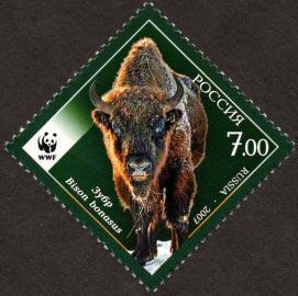 Berg-Wisent auf einer russischen Briefmarke