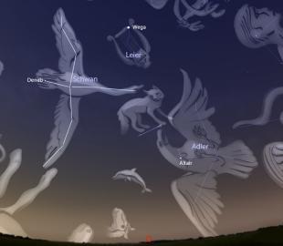 Stellarium-Projektion des Sommersternbilds Schwan und seiner Nachbarn