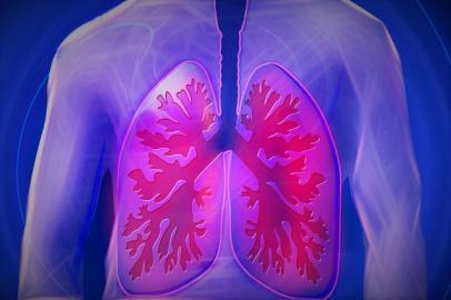 Lage der Lungenflügel im menschlichen Oberkörper