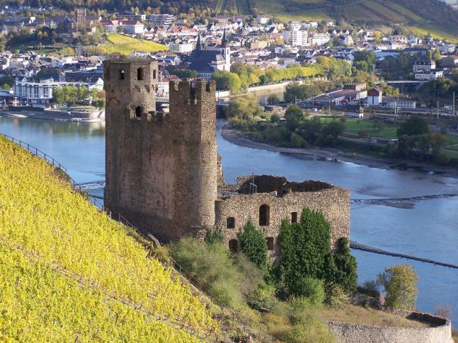 Nordansicht Burg Ehrenfals am Rhein