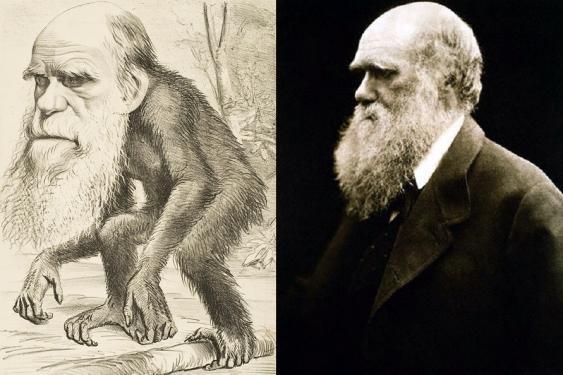 Darwin-Karikatur von 1871 und Porträtfoto von 1868