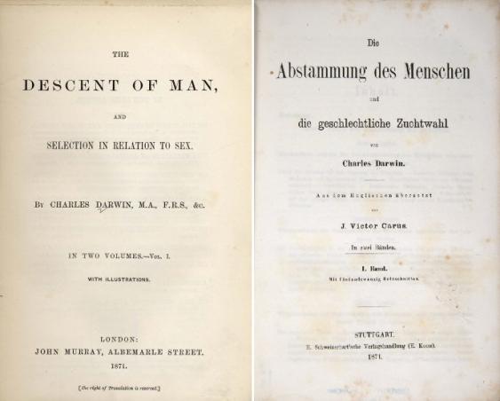 """Titelseiten der englischen Ausgabe (l.) von """"The Descent of Man, and Selection in Relation to Sex"""" und der noch im gleichen Jahr erschienen deutschen Übersetzung (r.)"""