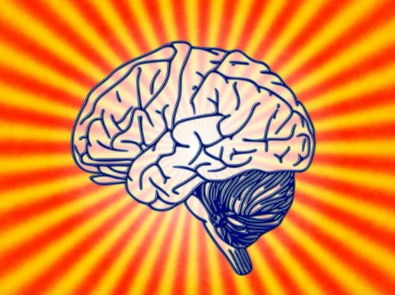 Gehirn vor ausfächernden Strahlen