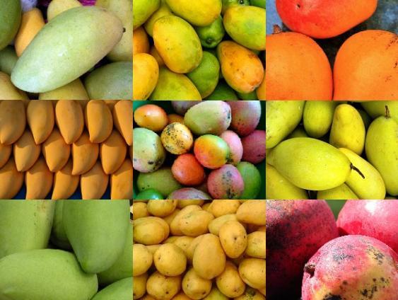 Mangosorten