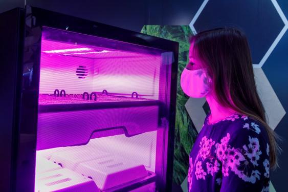 Ausstellung Indoor-Farming