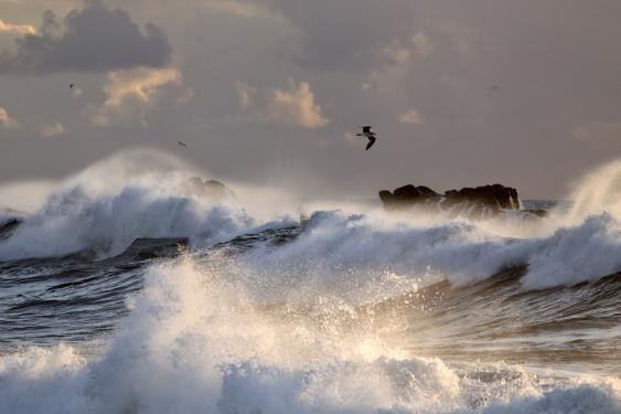 Meereswellen, Brandung