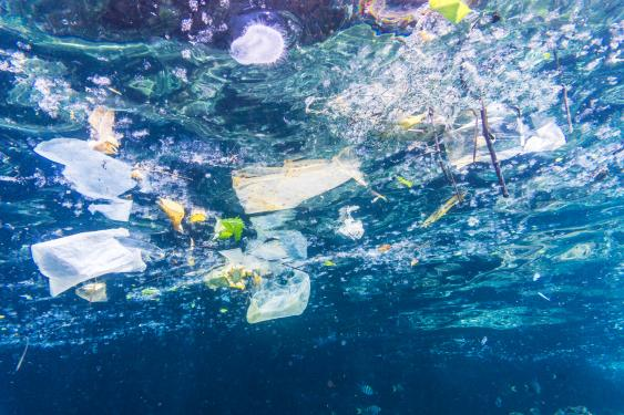 Im Meer treibender Plastikmüll