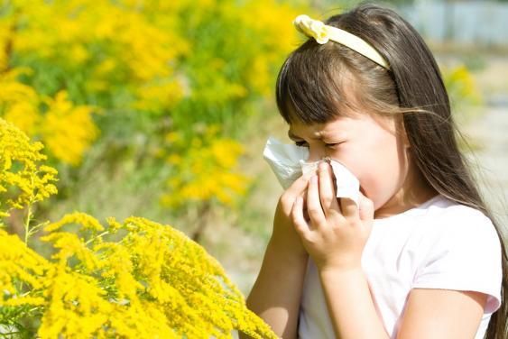 Symbolbild Pollenallergie