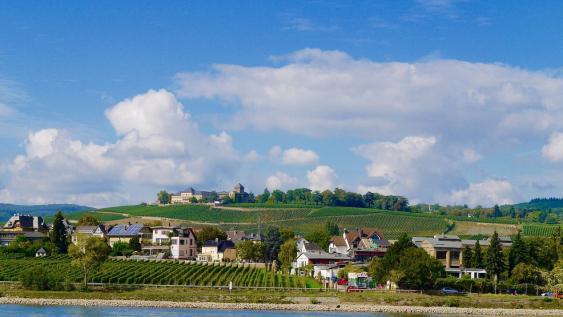 Blick von Rhein auf den Johannisberg im Rheingau