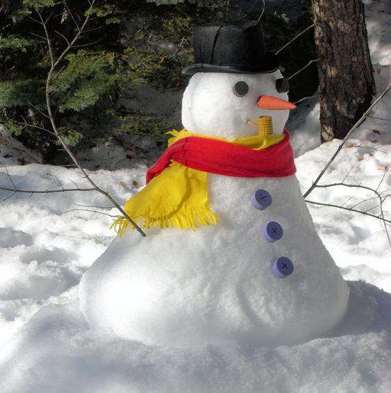 Bei Eis und Schnee geht mehr als nur einen Schneemann bauen