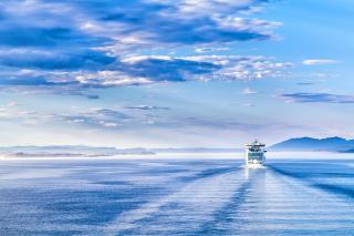 Kielwasser eines Kreuzfahrtschiffes