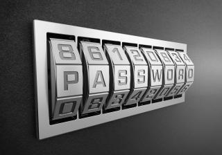 Passwortvisualisierung