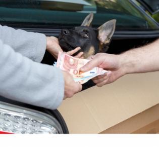 Symbolbild illegaler Tierhandel