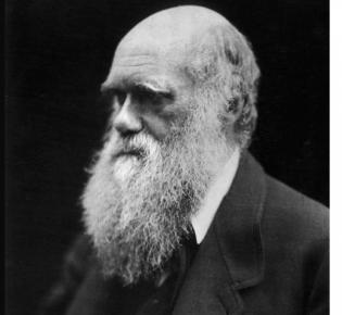 Charles Darwin, von Julia Margaret Cameron (1868)