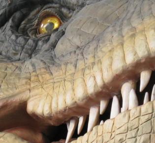T-Rex-Modell im Naturkundemuseum von Leiden