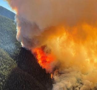 Cedar Creek Fire in Kalifornien, Juli 2021
