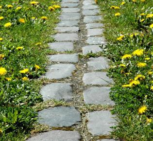 An einigen Stellen erinnert eine Doppelreihe Pflastersteine an den Verlauf der Mauer