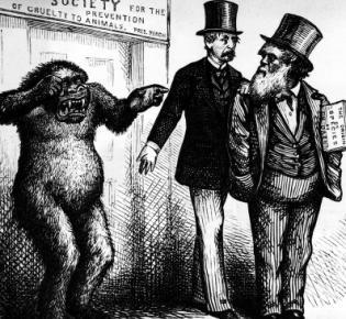 Karikatur auf Charles Darwin
