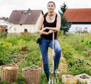Selbsterversorgerin bei der Gemüseernte