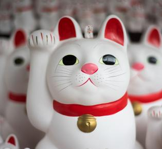 Maneki neko in Gotokuji