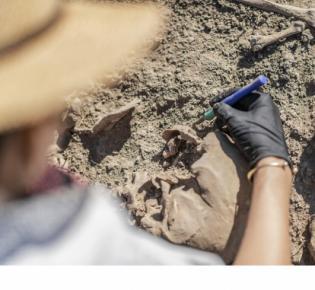 Archäologin beim Freilegen eines menschlichen Skeletts